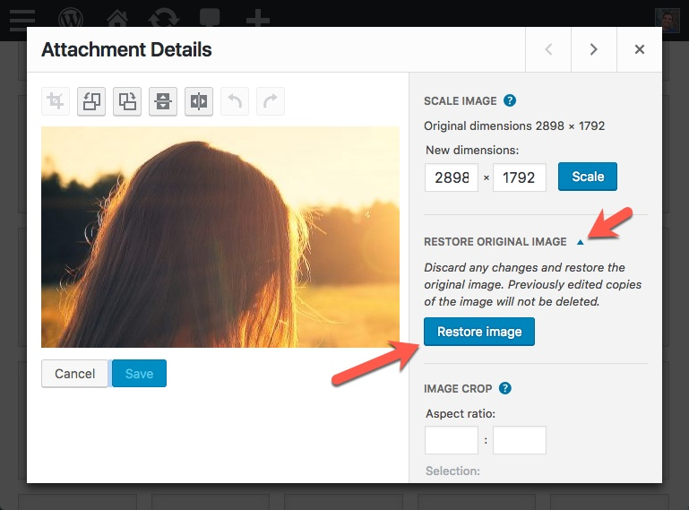 Restore Image WordPress