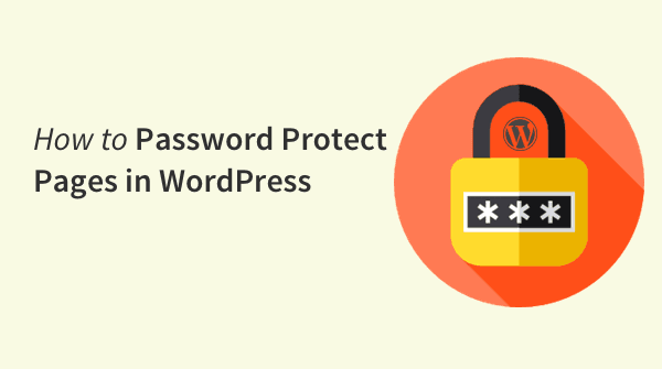How to Password Protect Pages,Posts, Sections and an Entire WordPress Website.