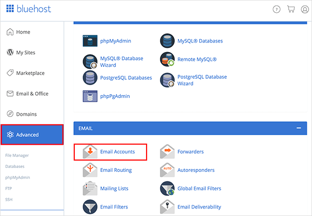 Choose the email accounts option under the advanced menu item