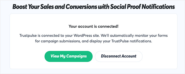Screenshot of connected account success message. Click view my campaigns to create a new campaign
