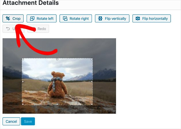 Click the crop button to crop your image in WordPress