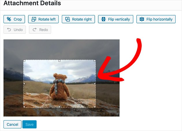 Click and drag to crop your image in WordPress