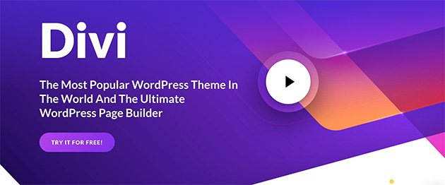 Divi WordPress theme homepage