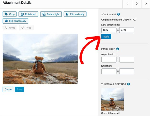 Click scale to use WordPress to resize images