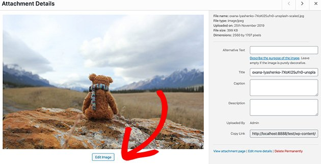 Click the Edit Image button to use WordPress to resize images