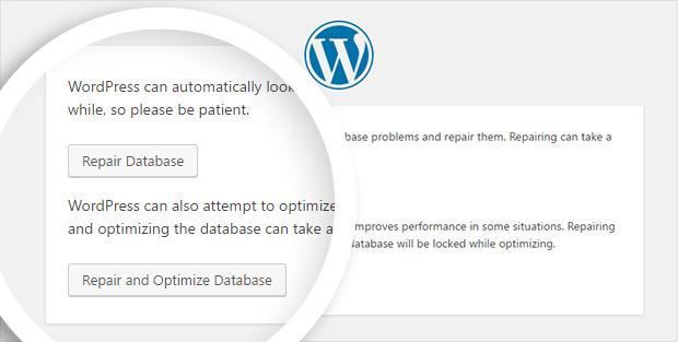 Allow WordPress to repair your database