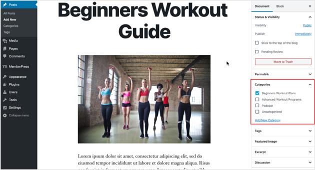 premium workout plans