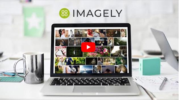 NextGen Gallery lightbox plugin