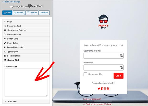 Enter your custom CSS
