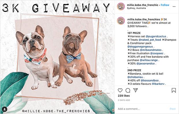 Instagram giveaway contest type