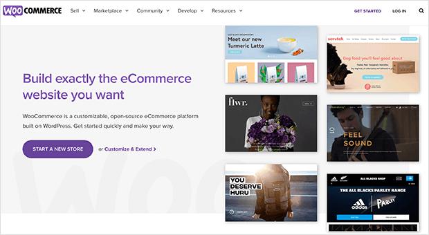 Best eCommerce plugin for WordPress