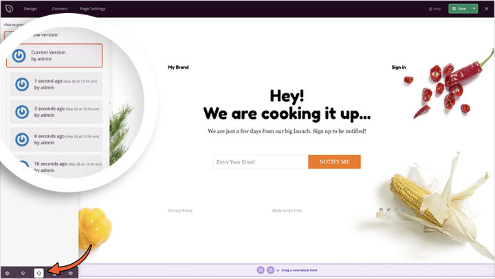 WordPress landing page builder version control and revisions