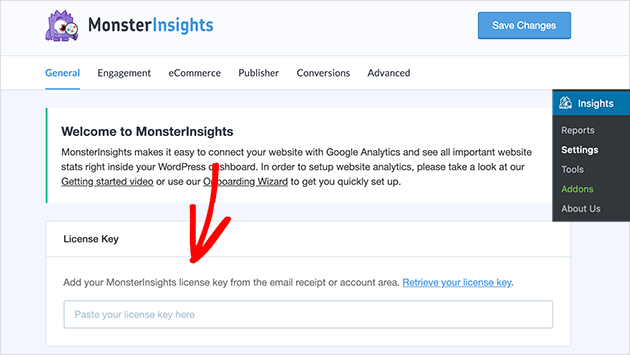 Enter your MonsterInsights license key