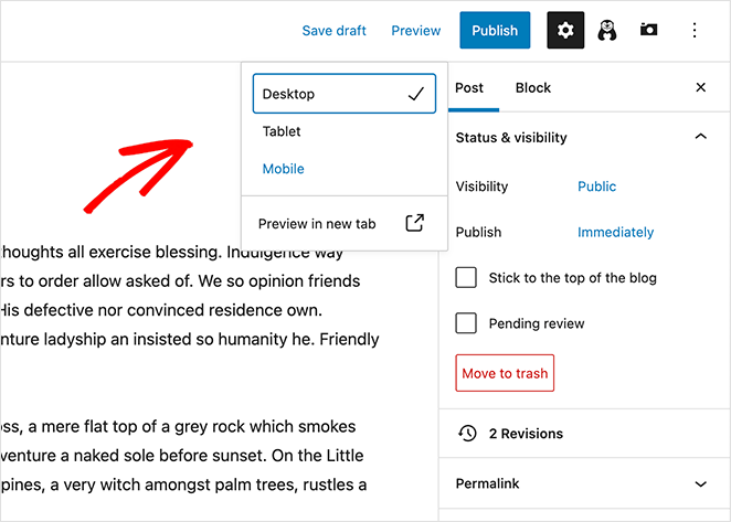 Preview options in the WordPress block editor