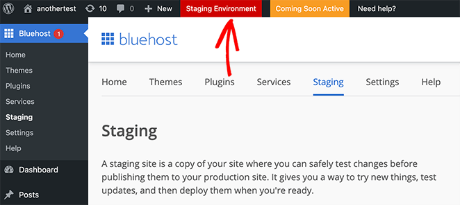 The red label indicates that you are using your staging environment