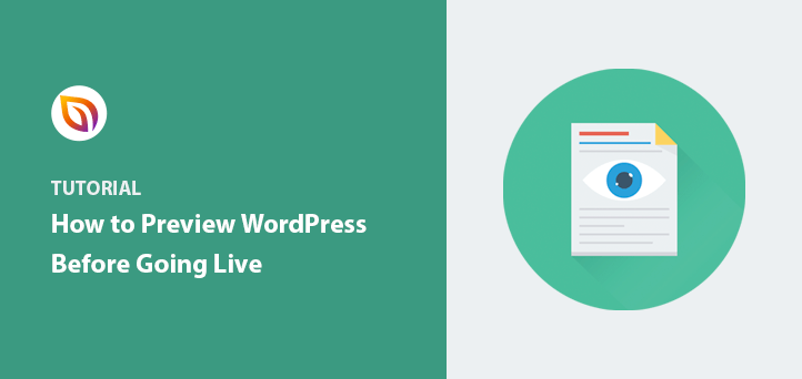 How to Preview Your WordPress Site Before Going Live