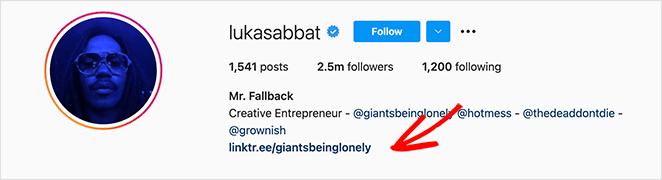 Lukka Sabbat Instagram bio link