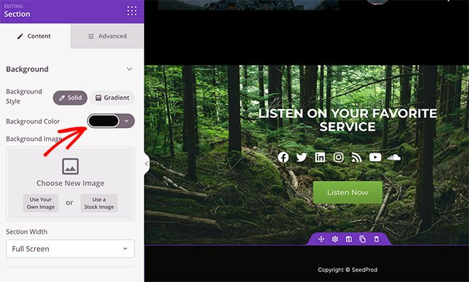 custom podcast landing page footer