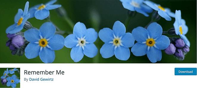 Remember Me free WordPress login plugins
